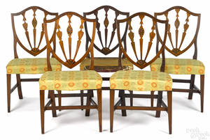Set of five New England Federal mahogany shieldback dining chairs ca 1800