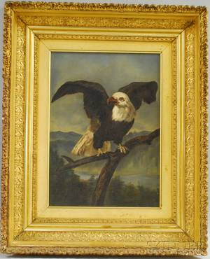 19th Century American School Oil on Panel Portrait of an American Eagle