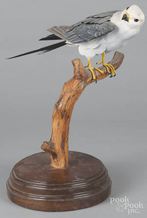 Carved and painted Peregrine Falcon
