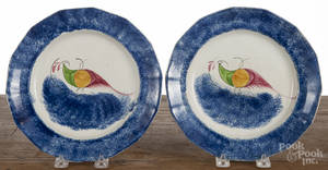 Pair of blue spatter peafowl plates