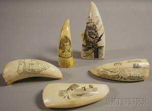 Five Scrimshawdecorated Whales Teeth