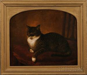Henry Collins Bispham ac Pennsylvania 18411882 Portrait of a Gray Tiger Cat Seated on a Chair