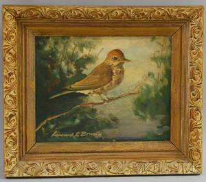 LE Brown Oil on Canvas a Sparrow