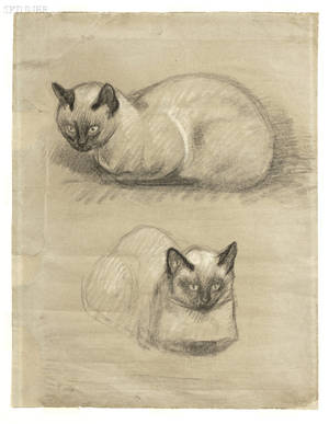 Theophile Alexandre Steinlen French 18591923 Study of a Cat