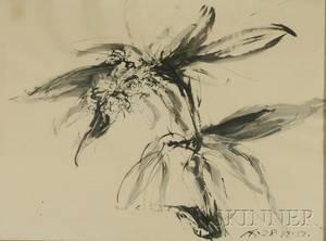 Andre Racz RomanianAmerican b 1916 Rhododendron
