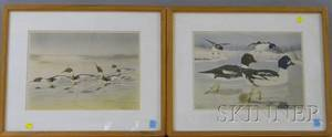 Pair of Framed Rex Brasier Waterfowl Prints