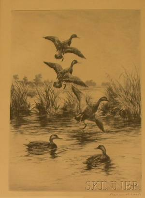 Framed Etching on Paper of Print of Black Ducks by Roland H Clark American 18741957