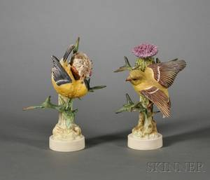 Pair of Royal Worcester Porcelain Dorothy Doughty Models of Birds