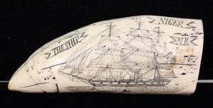 Reproduction Scrimshaw Whale