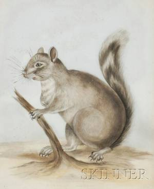 Continental Painted Glass Picture of a Squirrel in a Landscape