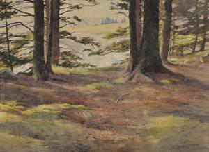 Harold Broadfield Warren American 18591934 The Edge of the Wood