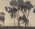 William E Dassonville American 18791957 Eucalyptus Trees and San Francisco Skyline