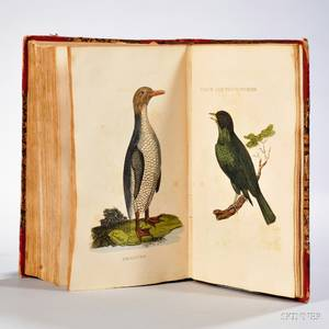 The Natural History of Birds from the Works of the Best Authors Antient amp Modern Embellished with Numerous Plates